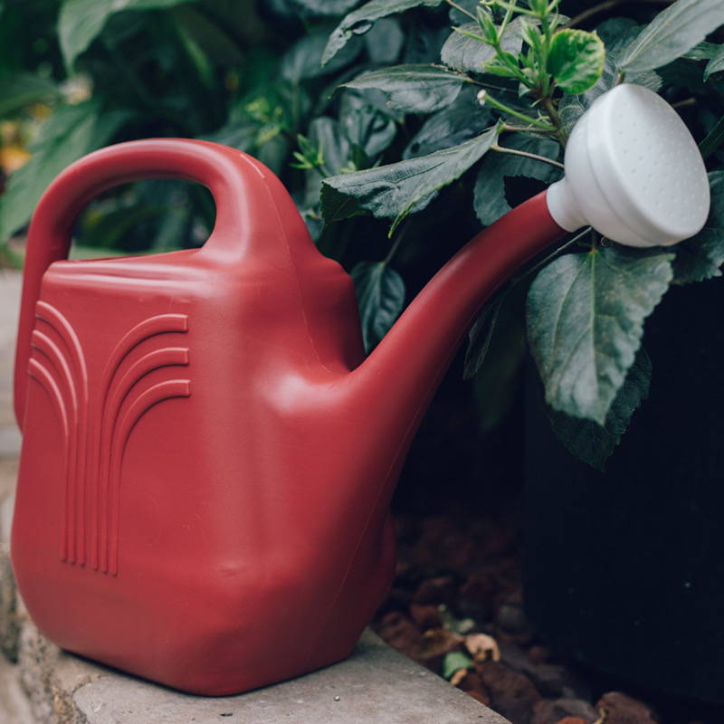 Classic Watering Can Main Image